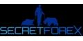Trader professionista impartisce lezioni sul mercato del forex