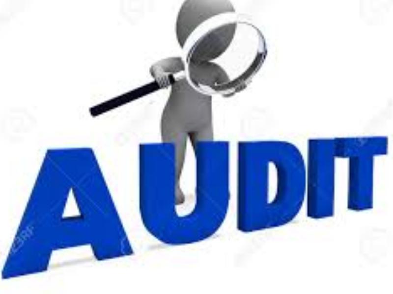 verifica la contabilità di un'azienda eseguita dalla stessa azienda per controllo interno.